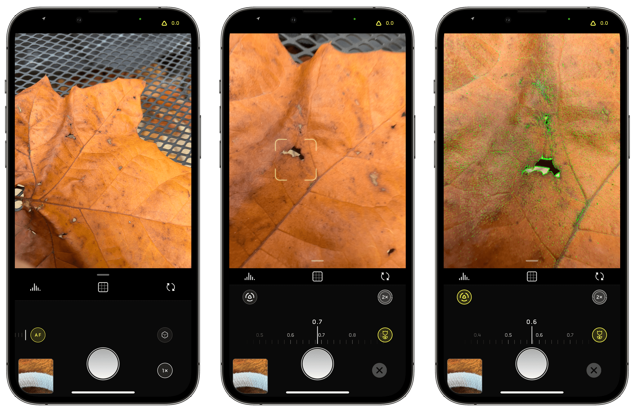 Switching to Macro Mode and dialing in precise focus is simple with Halide 2.5.